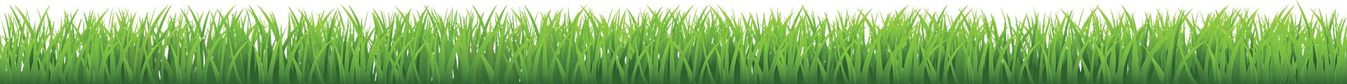 Transparent grass graphic